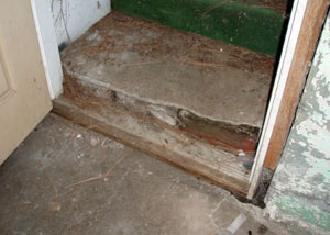 A flooded basement in Rogersville where water entered through the hatchway door